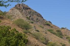 marche-vers-le-fort-de-taragarh-ajmer-inde